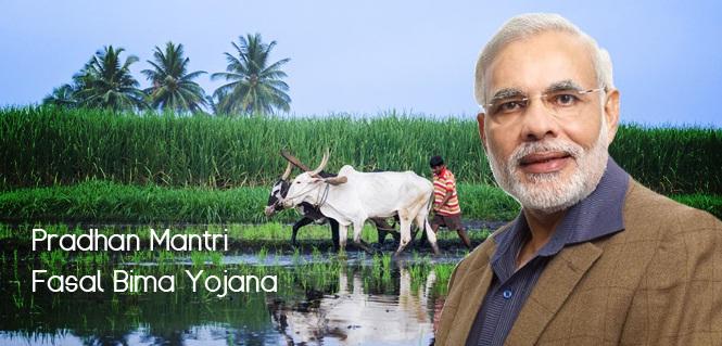 pradhan-mantri-fasal-bima-yojana