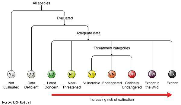 IUCN-threat-categories