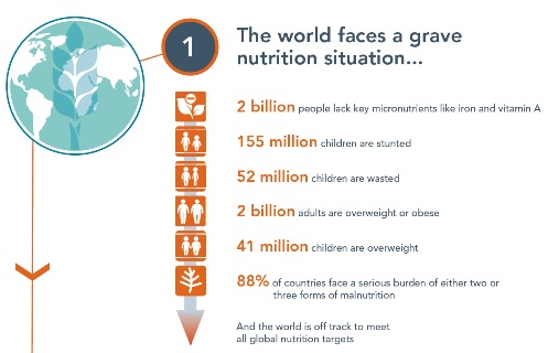 Global-Nutrition-Report-GNR