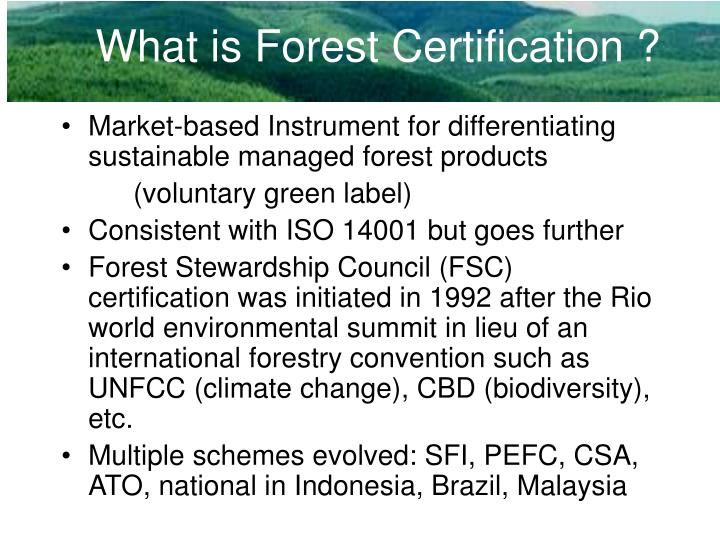 India's-first-forest-certification-scheme-gets-global-recognition.jpg