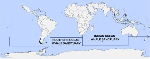 whale sanctuary map