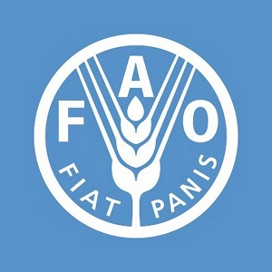 Food and Agriculture Organization - FAO